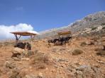 Balos Beach - Crete photo 28