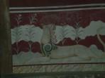 Knossos (archaeological site) - Crete photo 27