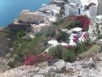 Oia (Ia) - Santorini photo 61