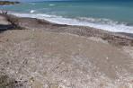 Anemomilos Beach (Anemomylos) - Rhodes island photo 13