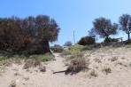 Apolakkia Beach (Limni) - island of Rhodes photo 15
