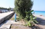Ialyssos Beach (Ialissos) - Rhodes Island photo 3