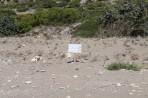 Kalamos Beach - Rhodes Island photo 5