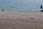 Massari Beach (Masari) - Rhodes Island photo 3